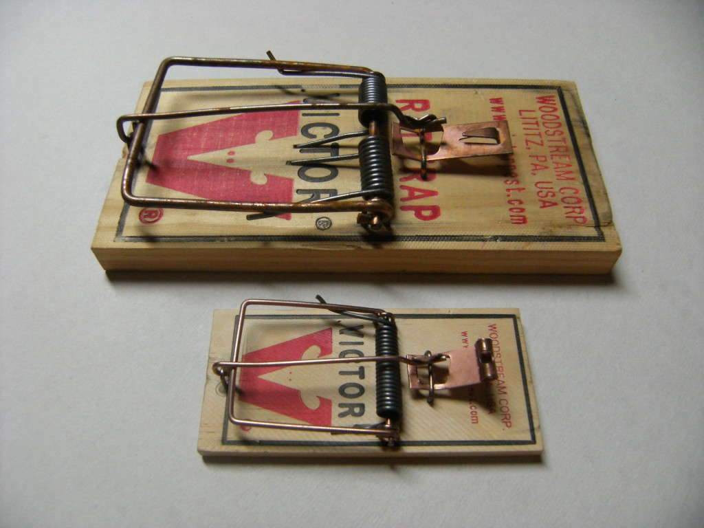 Rattrap_and_mousetrap